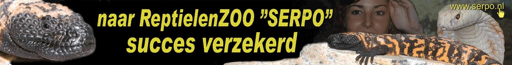 Serpo banner 2007